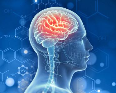 A AlphaXYZ összetevőiről kiderült, hogy segítenek fokozni az emlékfelidézést nőknél és férfiaknál egyaránt, minden korosztálynál. A húszas éveik elején járó nőktől és férfiaktól kezdve a harmincas éveik végén járó korosztályig mind jelentős javulást figyeltek meg a rövid távú memóriát illetően, és némi javulást a hosszú távú emlékeik felidézésében, míg a 40 és 65 év közötti emberek mindkét kategóriában döbbenetes javulásról számoltak be!