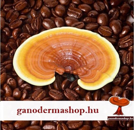 ganodermas kave A ganodermás kávé az egyetlen kávéfajta, ami a reflux tüneteit csökkenti