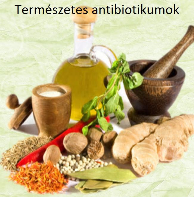 Természetes antibiotikumok