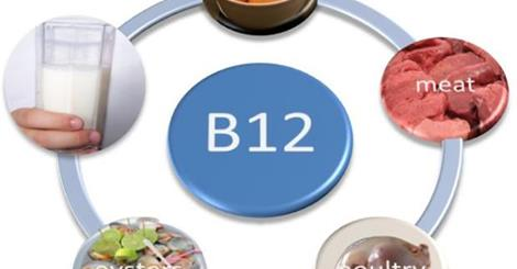 B-12 vitamin források