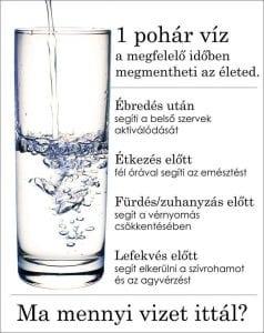 A legtöbb testfunkció és szerv függ az elfogyasztott vízmennyiségtől.