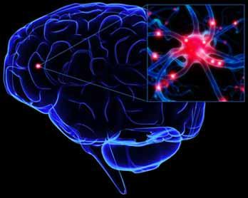 Memóriajavító étrendkiegészítő
