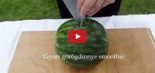 Görögdinnye smoothie