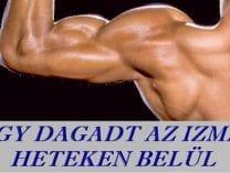 Nézd meg hogyan csinálta? tömegépítés bodybuilding
