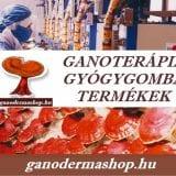 GANODERMA GYÓGYGOMBA TERMÉKEK - GANODERMA GOMBA SPIRULINA