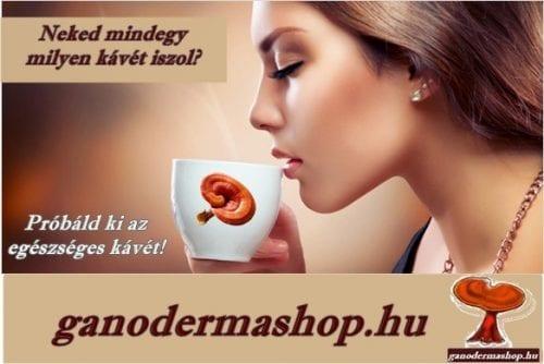 Neked mindegy milyen kávét iszol? Lúgosító, gyógyhatású ganodermás kávé