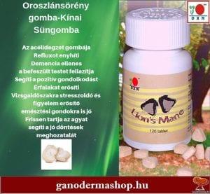 Oroszlánsörény tabletta